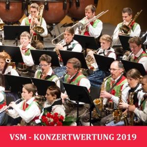 2019-05-18 VSM Konzertwertung in Auer (0) ... Titelbild